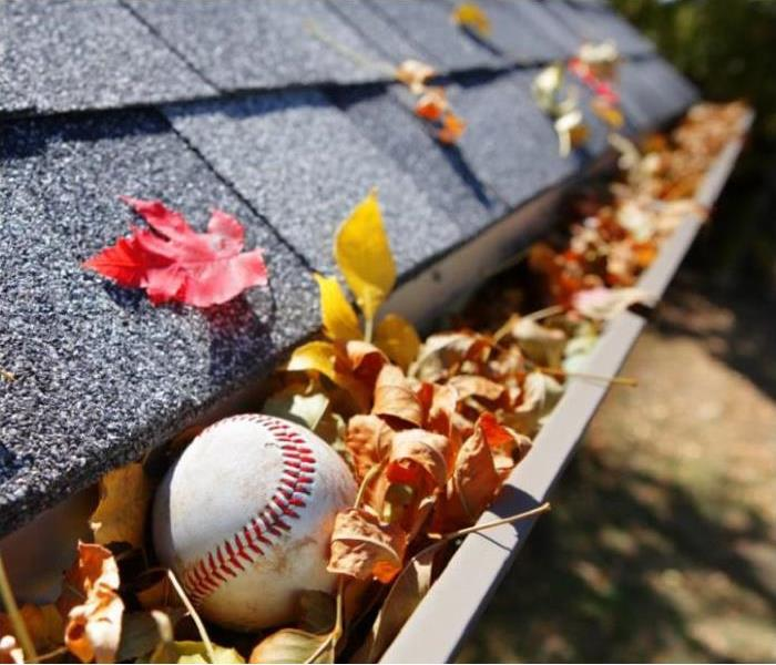 Water Damage True Facts of Clogged Gutters
