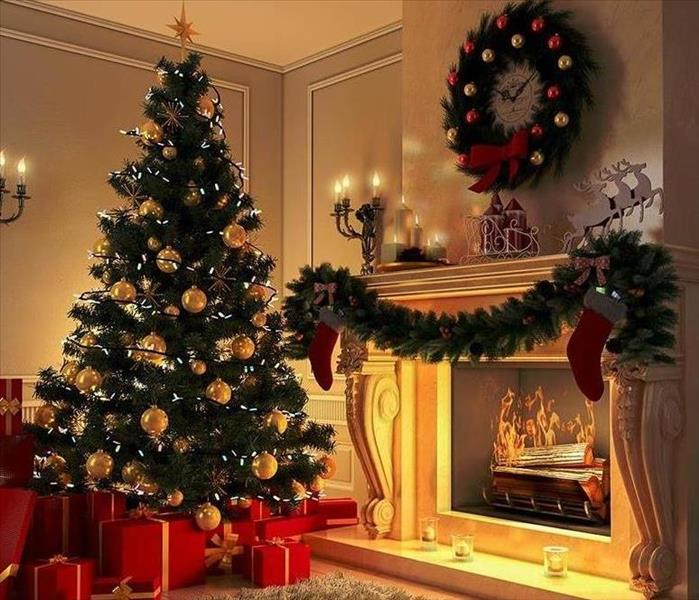 Image of Christmas tree in room