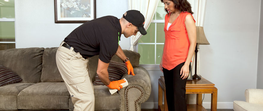 Tracy, CA carpet upholstery cleaning
