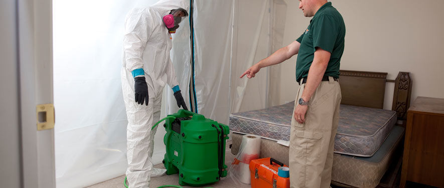 Tracy, CA mold removal process